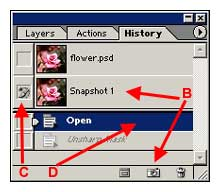 Snapshot Screen