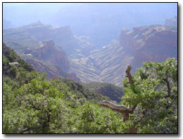 Grand Canyon © Jerry Reber